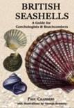 British Seashells