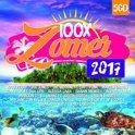 100X Zomer 2017