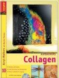 Aufbaukurs Collagen