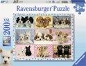 Ravensburger Snoezige pups - Puzzel van 200 stukjes