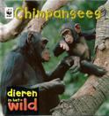 Dieren in het wild - Chimpansees