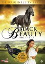 Black Beauty Box