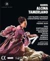Alcina Tamerlano