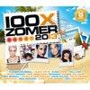 100x Zomer 2013