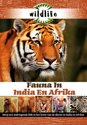 Wildlife - Fauna In India En Afrika