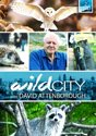 Wild City With David Attenborough