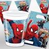 Spider-Man Feest