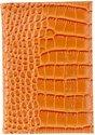 oranje bruin krokodillen dessin