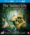 The Secret Life Of The Rainforest (3D+2D Blu-ray)