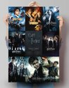Reinders Poster Harry Potter - collection - Poster - 61 Ã? 91,5 cm - no. 22615