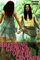 Breeding Ground of the Centaur: Monster Gangbang Breeding Erotica