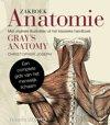 Medische wetenschapsboeken - Anatomie & Fysiologie