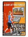 Virtuele wandelingen - Een dag in het bos