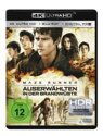 Maze Runner 2 (Ultra HD Blu-ray & Blu-ray)