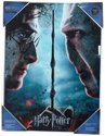 Harry Potter - Harry & Voldemort Glass Poster
