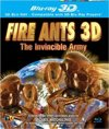 Fire Ants-Invincible Army