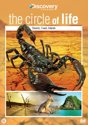 The Circle Of Life - Deserts, Coast, Islands