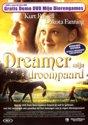 Dreamer Mijn Droompaard