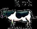 'koe', K=T